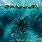 Chillum Vol. 5 - The Ultimate Tribal Ambient Journey by Various Artists