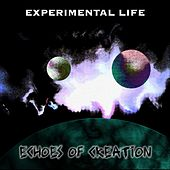Echoes Of Creation by Experimental Life