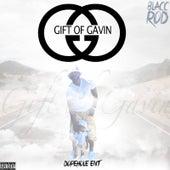 Gift of Gavin by Blacc Rod