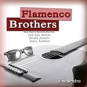 Encuentro by Flamenco Brothers