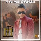 Ya Me Canse by Mario Delgado Jr.