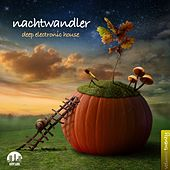 Nachtwandler, Vol. 20 - Deep Electronic House de Various Artists
