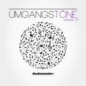 Umgangstöne, Vol. 13 by Various Artists