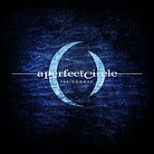 The Doomed de A Perfect Circle