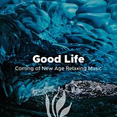 Good Life - Coming of New Age Relaxing Music with Nature Sounds (Rain, Ocean Waves, Forest, Thunderstorm) von Lullabies for Deep Meditation