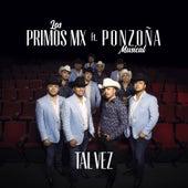 Tal Vez by Los Primos MX