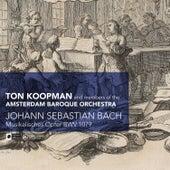Bach: Musikales Opfer, BWV 1079 by Ton Koopman