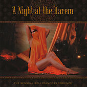 A Night at the Harem by Various Artists