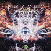 Phases Of Madness - EP by Various Artists