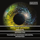 Into the Wonder by Thunder Bay Symphony Orchestra