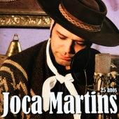 25 Anos de Joca Martins