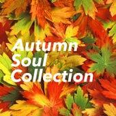 Autumn Soul Collection de Various Artists