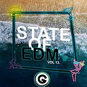 State Of EDM, Vol. 13. - Single by Rich Knochel
