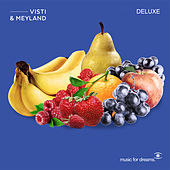 Sharing the Light (Deluxe) by Visti and Meyland