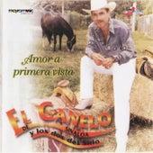 Amor a Primera Vista de El Canelo De Sinaloa