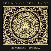 Sound of Soulence von Various