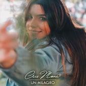 Un Milagro by Cris Moné