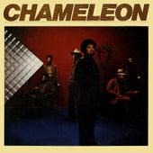Chameleon by Chameleon (3)