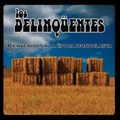 Bienvenidos A La Época Iconoclasta de Various Artists