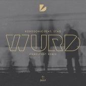 WURD (CamelPhat Remix) by Robosonic