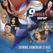 Shining Armenian Stars Vol. 9 by Various Artists