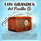 Los Grandes del Pasillo de Various Artists