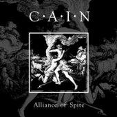 Alliance of Spite de Cain (1)