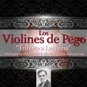 Tributo a Lecuona de Violines De Pego