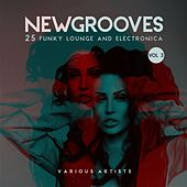 New Grooves, Vol. 3 (25 Funky Lounge & Electronica) by Various Artists