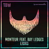 Lions von Monteur