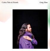Going Home de Carlos Nino