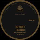 Fathoms / Suspicion by Spirit