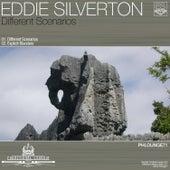 Different Scenarios by Eddie Silverton