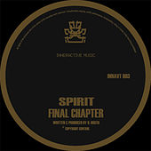 Final Chapter / Raygun by Spirit