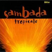Tropicale de SambaDa