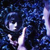 Did I Offend You? von Lauren Ruth Ward