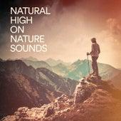 Natural High on Nature Sounds de Various Artists