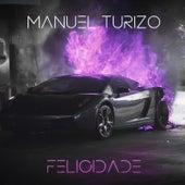 Felicidade de Manuel Turizo Zapata (MTZ)