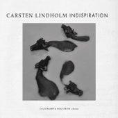 Indispiration by Carsten Lindholm