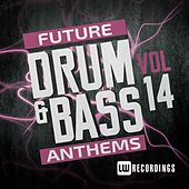 Future Drum & Bass Anthems, Vol. 14 - EP by Various Artists