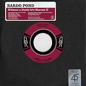 Without a Doubt by Bardo Pond