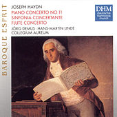 Haydn: Piano Concertos d-major by Various Artists