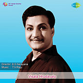 Visala Hrudayalu (Original Motion Picture Soundtrack) de Various Artists