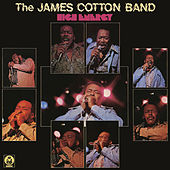 High Energy di James Cotton