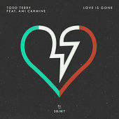 Love Is Gone by Todd Terry