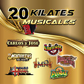 20 Kilates Musicales by Various Artists