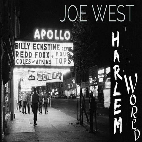 Harlem World by Joe West