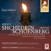 Fatal Affairs by Saulius Sondeckis