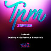 T.P.M Riddim by Various Artists