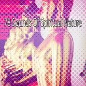 78 Sounds Of Spiritual Nature von Entspannungsmusik